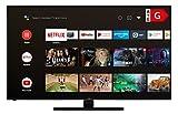 HITACHI U65KA6150 65 Zoll Fernseher Android Smart TV (Play Store & Google Assistant, 4K UHD + HDR 10, Bluetooth, PVR-Ready, Triple-Tuner)