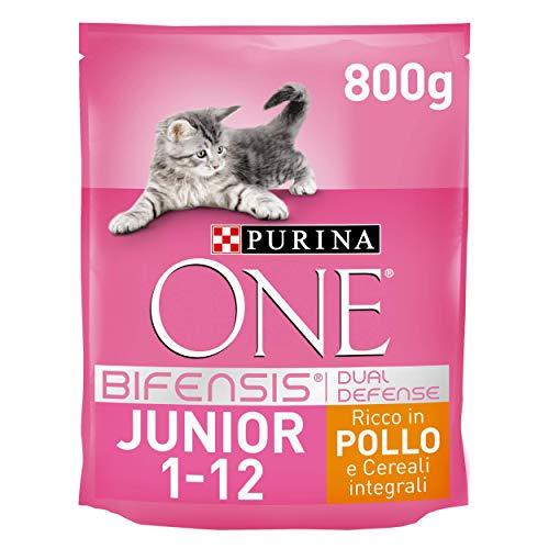PURINA ONE Bifensis Crocchette Gatto Junior 1-12 Mesi Ricco in Pollo e Cereali Integrali, 8 Confezioni da 800g Ciascuna, Peso Totale 6,4 kg
