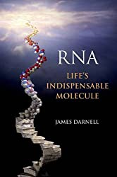 , What Does RNA Do In A Cell?, Science ABC, Science ABC