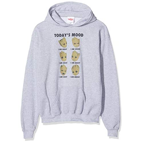 Marvel Guardians of The Galaxy Vol 2 Groot Today's Mood Felpa, Grigio (Sports Grey SpGry), 12-13 Anni Bambina