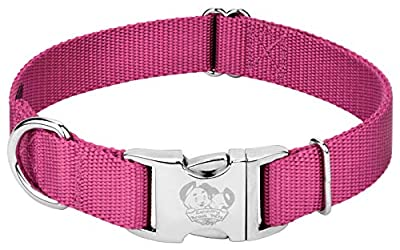 Country Brook Petz - Premium Nylon Dog Collar with Metal Buckle - Vibrant 24 Color Selection (Large, 1 Inch Wide, Rose)