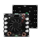 Plyisty Scheda Amplificatore di Potenza, Scheda Amplificatore Audio Digitale Mono da 420 W...