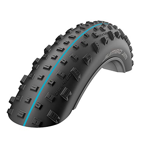 Schwalbe JUMBO JIM SnakeSkin TLE Falt Addix Speedgrip 26 Zoll 110-559 FAT BIKE