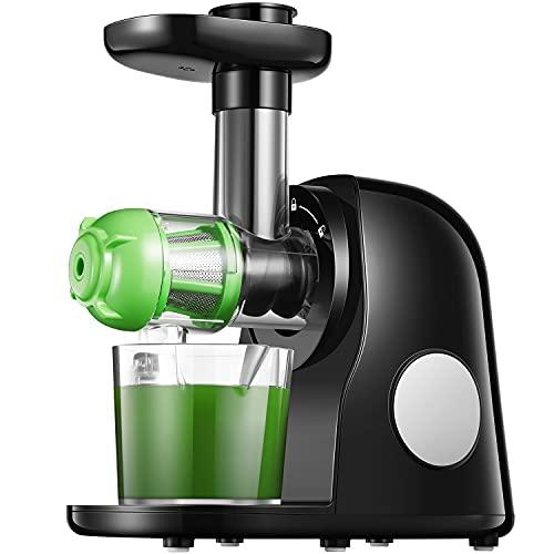Slow Juicer, Entsafter Gemüse und Obst mit 2 Filter, Leistungsstarker Ruhiger Motor & Umkehrfunktion & Saftkanne & Reinigungsbürste, Leicht zu Reinigen