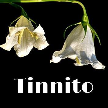 Tinnito - Eliminare il Rumore durante Volo o Viaggio in Aereo, Suoni della Natura Relax