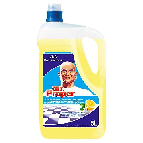 Meister Proper Professional Allzweckreiniger Zitrus, 1er Pack (1 x 5 Liter)