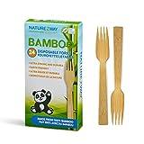 Naturezway Einweggabeln aus Bambus, 24 Karat, baumfrei, erneuerbar, pflanzlich