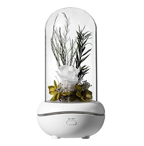 LED Nachttischlampe Aromatherapie Kleine Nachtlicht USB Wiederaufladbare Schreibtischlampen Lampe Warmlichtmodus Farbverlaufsmodus Stimmungslichter Lampe (3,66 Zoll * 3,66 Zoll * 6,89 Zoll, Weiß)