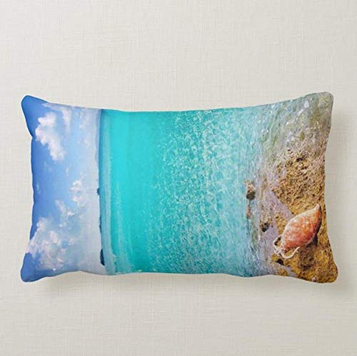 Perfecone Home Improvement - Funda de almohada para sofá y coche (50 x 90 cm)