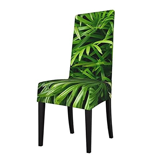 Fotografía Más Arbustos de escritorio tropicales Hojas tropicales Funda de asiento desmontable para silla de comedor es adecuada para banquetes de ceremonia de hotel