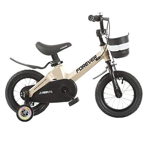 bicicletta Bici Pieghevoli Bambini Ragazzo Ragazza 3-6-7-10 Anni Bambino 12/14/16 Pollici Esterna (Color : Gold, Size : 12in)