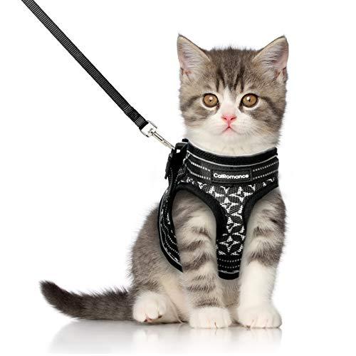 CatRomance -   Katzengeschirr mit