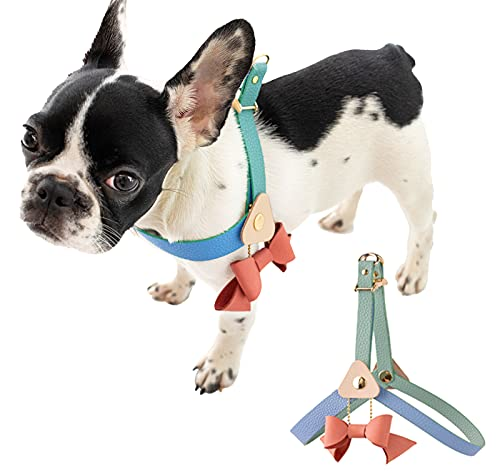 Soulitge Leather Dog Harness Handcraft with Bow Pendant, Harness for Medium Dogs, Good for French Bulldog|Poodle|Beagle|Dachshund|Welsh Corgi|Boston Terrier|Brittany|Spaniel, Mint (Medium)