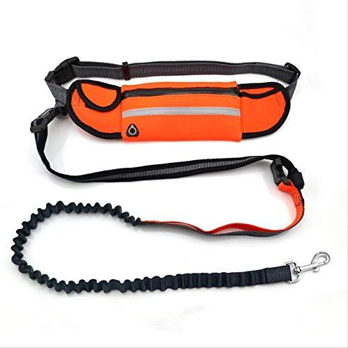 XYBB hondenriem Leash voor honden en leash met riem voor honden en honden, M, Oranje.