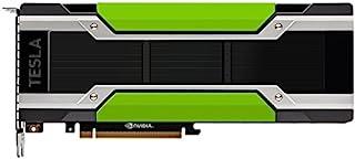 PNY Tesla P100 16 GB High Bandwidth Memory (HBM) - Tarjeta gráfica (Tesla P100, 16 GB, High Bandwidth Memory (HBM), 4096 bit, PCI Express x16 3.0)