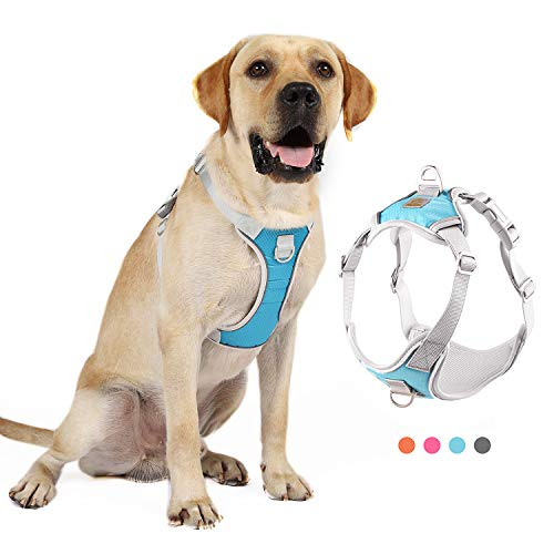 Negbpol Dog Harness, No-Pull Reflective Vest Pet Harness with 2 Leash Clips,Front Range Explosion-Proof Lightweight Dog Harness for Small and Medium-Sized Dogs (Medium, Blue)