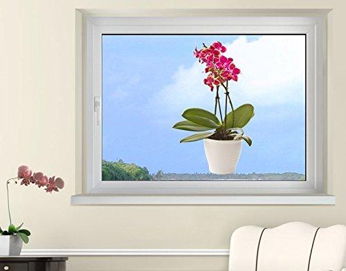 Klebefieber Fenstersticker Blühende Orchideen B x H: 19cm x 30cm