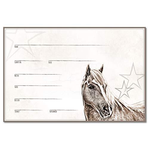 ZAUBERBILD Boxenschild Stallschild Stalltafel Namensschild Pferd 'Haflinger' 20x30cm Alu