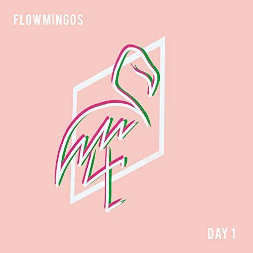 Flowmingos