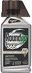 Roundup Concentrate Max Control is the Best Concentrate for Killing Vegetation