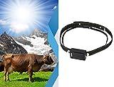 Osmewy GT080 - Rastreador solar GPS para cachorros de perro (tamaño grande, antipérdida, IP67, resistente al agua, control remoto de tiempo real, larga duración, anticaída, correa GT080)