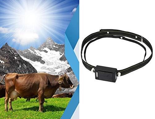 Osmewy Solar Cattle GPS Tracker Für Kuh Schaf GPS Tracking Gerät Vieh Tracker Wasserdicht Langer Standby Echtzeit-Locator Für Horses Hounds Rescue Dog Schäfer Hund mit Kragen Anti-Lost GT080