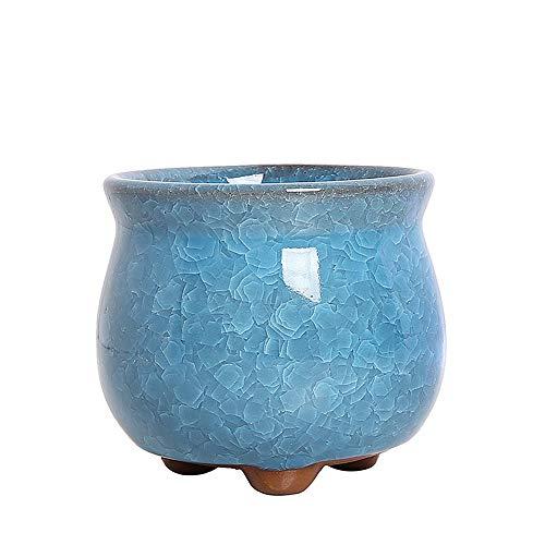 LSTC Macetas Ceramica Macetas Pequeñas Planta de Marihuana Semillas de ollas Flor Olla Interior Pote de Flor de Interior Macetas para Plantas La Planta Blue