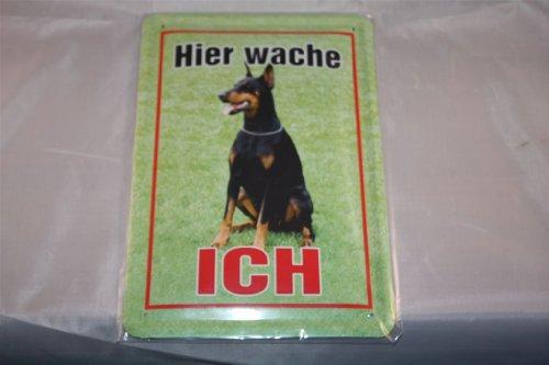 Aquí wache ich.. Dóberman Cartel de chapa Cartel 20x 30cm perro perros Dog Dogs