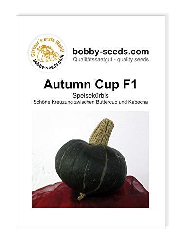 Autumn Cup F1 Kürbissamen von Bobby-Seeds, Portion