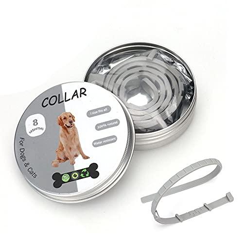 Alkinshue Collare Antipulci e Zecche per Cani, Collare Antipulci Cane Regolabile Impermeabile, Collare Antipulci Cane Taglia Grande 8 Mesi di Protezione, 62CM