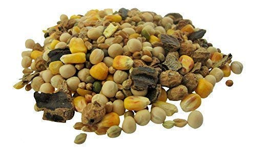 CommonBaits BIG CARP Partikel Mix 10Kg