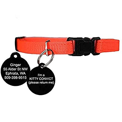 orange kitty convict project cat collar with personalized tag