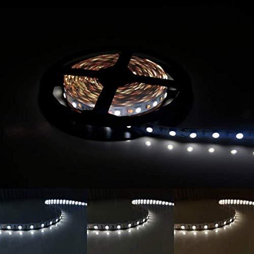 Ruban LED 12V 5M 5050 IP20 60LED/m - Blanc Froid 6000K - 8000K - SILAMP