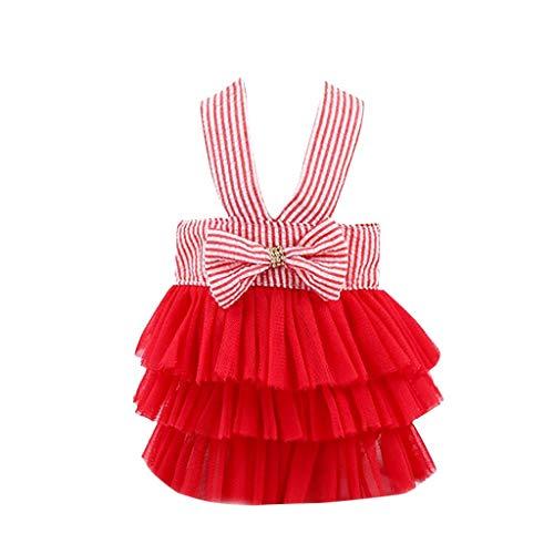 YWLINK Prinzessin Kleider Vokuhila Sommer Party Abendkleid Hochzeit Elegant Sling Kleid Streifen Spitzen Patchwork Kleid Hundekleid Bogen Tutu(Rot,S)