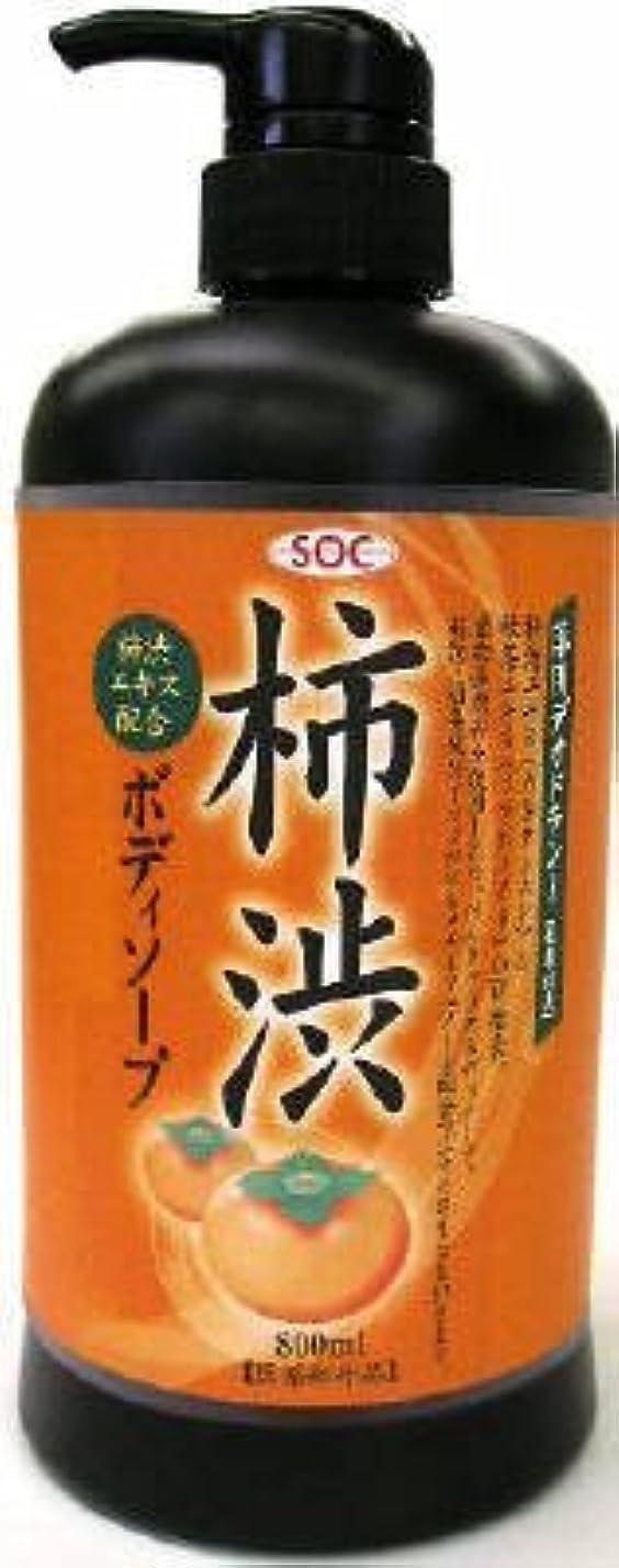 ジャンク炎上ジュース渋谷油脂 SOC 薬用柿渋ボディソープ 本体 800ml お肌にマイルドなせっけんタイプのボディソープ フルーティーフローラルのさわやかな香り×12点セット (4974297276010)