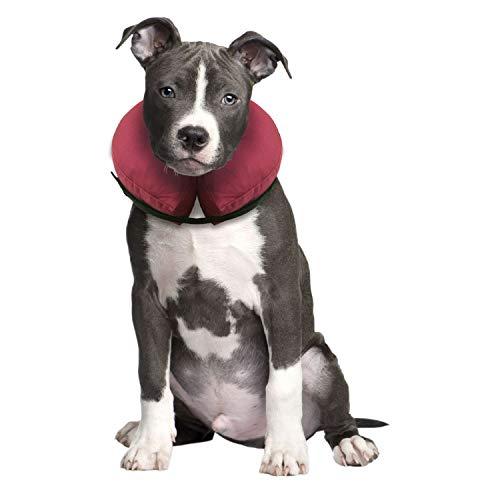 iCollr - Il Collare Gonfiabile - Collare Protettivo per...