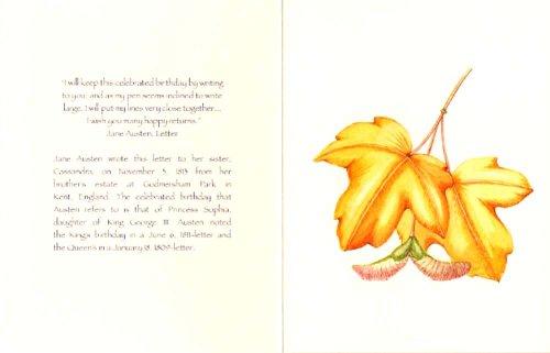 Literary Birthday Card Assortment Photo #4