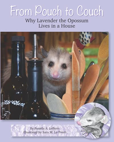 From Pouch to Couch: Why Lavender the Opossum Lives in a House