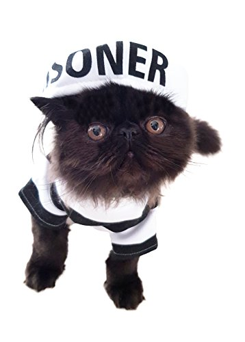 Glamour Girlz grappige hond kat zwart & wit streep gevangene gevangene outfit & hoed halloween kostuum, Small, Rood