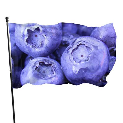 N/A USA Guard Vlag Banner Welkom Vlaggen Bloed Natuur Vruchten Voedsel Planten Macro Bessen Bosbessen Yard voor Vakantie Patio Verjaardag Decoratie 3x5 Ft