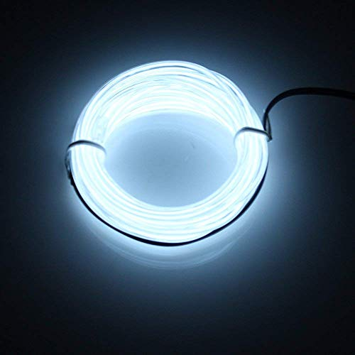 Lerway Luz de Neón el Alambre con Controlador Box, Resistente al Agua...