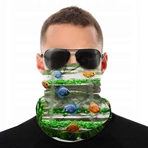 YUXB Stirnbänder für Männer Frauen Hals Gamasche, Gesichtsmaske, Stirnband, Schal Aquarium Discus Turban Multi Schal doppelseitig bedrucktes Bandana Stirnband für Frauen für