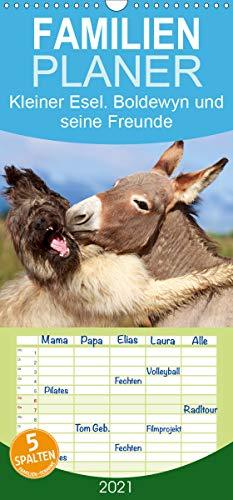 Kleiner Esel. Boldewyn und seine Freunde - Familienplaner hoch (Wandkalender 2021, 21 cm x 45 cm, hoch)