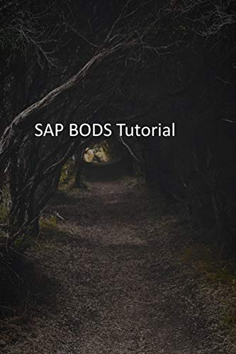 SAP BODS Tutorial (English Edition)