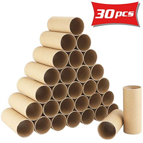 Neworkg 30 Pack Craft Roll - Cardboard Tubes for DIY Crafts,3.9 inches Tall