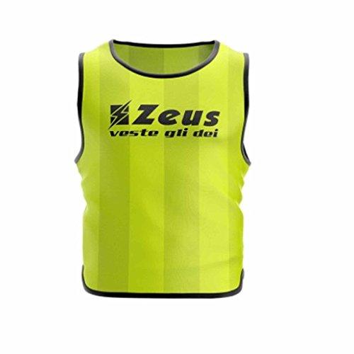 Zeus 10 Pezzi Casacca Promo Pettorina Allenamento Ginnastica Training Corsa Fitness Palestra Calcio Calcetto (Confezione 10 Pezzi) (Senior, Giallo)