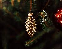 数字で描くアクリル絵の具の色原稿の装飾松ぼっくりの木新年のクリスマスDiy数字で描くデジタル絵画現代アートオイルクリスマス誕生日の家の装飾 カスタマイズ可能 60x75cmフレームなし