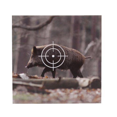 50 Tiermotiv Zielscheiben