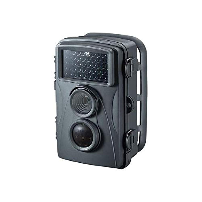 上精巧などこでもサンワサプライ セキュリティカメラ CMS-SC01GY AV デジモノ カメラ デジタルカメラ 防犯カメラ 14067381 [並行輸入品]