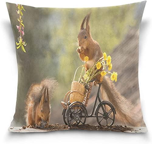Throw Pillow Case Funda de cojín Decorativa Funda de Almohada Cuadrada, Ardilla Inconformista de pie en la Bicicleta Funda de Almohada para sofá Cama (18 x 18 Pulgadas)